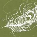 De nouvelles plumes prennent leur envol
