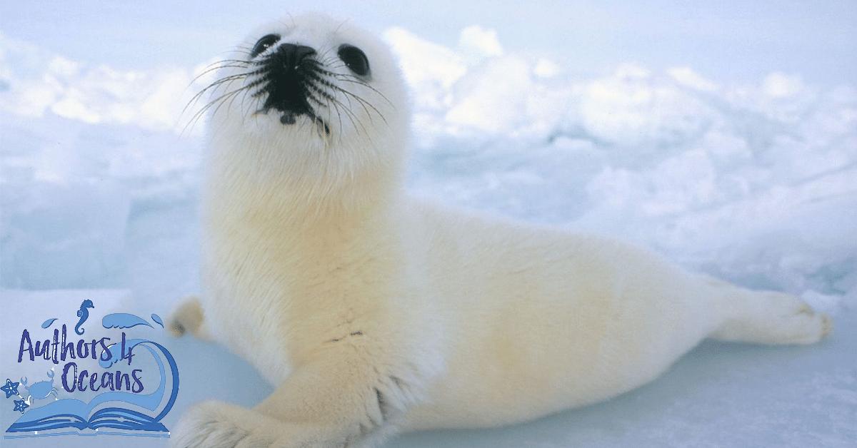 Authors4Oceans, une initiative de 50 auteurs contre la pollution maritime