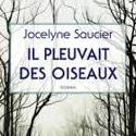 Les libraires français retiennent Il pleuvait des oiseaux