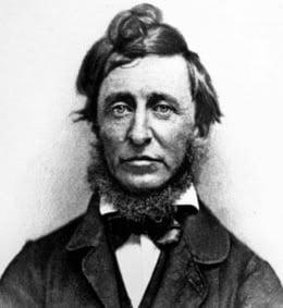 Walden : un jeu vidéo inspiré de Thoreau
