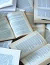 À quoi bon les romans?